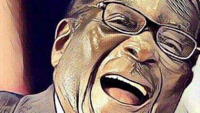 Photo of Zimbabwe deteriorating after exit of Mugabe – Imani Africa report