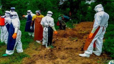 Photo of Coronavirus: Death toll now 103