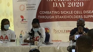 Photo of We Need a National Strategy to Fight Sickle Cell – Dr. Sefakor tells Government
