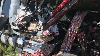 Photo of More than 200 killed in road accidents in Bono, other regions this year– NRSA