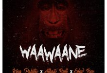 Photo of Audio + Video: King Paluta x Alhaji Bull x Edey Bee – Waawaane