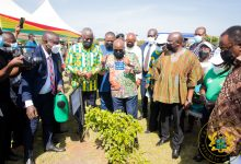 Photo of Green Ghana project to become annual event – President Akufo-Addo