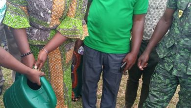 Photo of Asante Akyem North: Green Ghana Project launched [Photos]