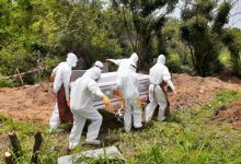 Photo of Covid-19: Nine doctors dead, over 544 test positive – GMA